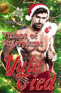 Buy Sara Jay's Visions of Sugarplum